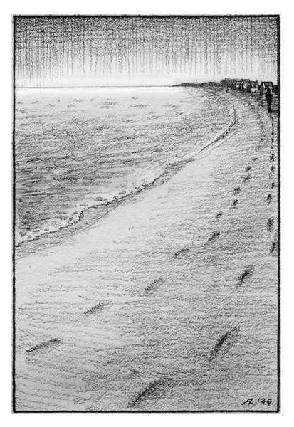 Strand272